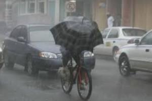 umbrella user