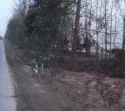 roadsie-bike